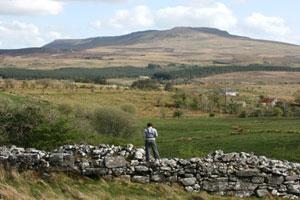 The Cavan Way