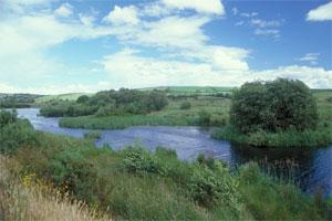 Clogheenmilcon Looped Walk