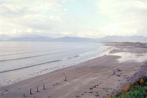 Rossbeigh Looped Walk