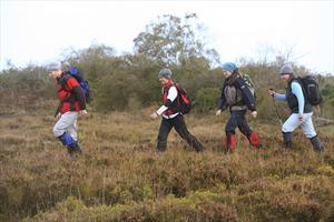 Lough Boora - Mesolithic Loop Walk