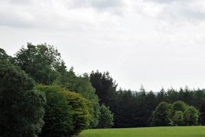 Avondale Forest Park - Cairn Walk