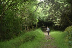 Broadford Ashford Walking Trails - Gortnaclohy Loop